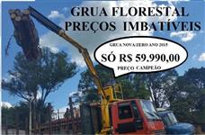 GRUA  FLORESTAL E SUCATEIRA