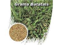 Grama Batatais -10kg Sementes Forrageiras Frete Gratis