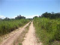 Fazenda 19.360 ha Tocantins