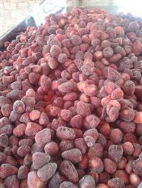 Frutas congeladas no atacado e verejo!