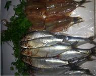 Venda de filés de sardinha temperados,corvinas e camarão