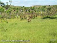 Fazenda no Tocantins
