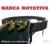 Máquina para beneficiar lavar secar polir escolher classificar selecionar tomate