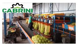 Máquinas para beneficiar, classificar, escolher, lavar, secar e polir laranja