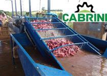 Fabrica de Farinha de mandioca (casa de farinha de mandioca)