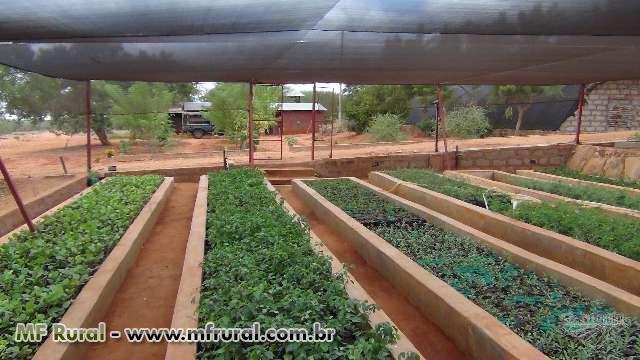 TELA SOMBRITE: Tela Agrícola –35%, 50%, 65%, 80% - CONFIRA NOSSOS PREÇOS