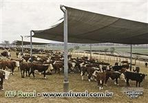 TELA SOMBRITE: Tela Agrícola - Sombrite 80%
