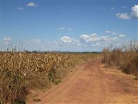 Fazenda para agricultura em Brejinho de Nazar�, Alian�a do Tocantins