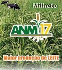 MILHETO AMn 17
