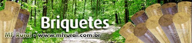 BRIQUETES DE PINUS E EUCALIPTO