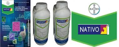 NATIVO FUNGICIDAS (TRIFLOXISTROBINA) (TEBUCONAZOL)