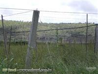 Estrutura Completa para Uva, Maracujá