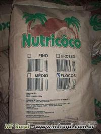 CÔCO RALADO (FINO, MÉDIO, GROSSO),  FLOCOS, ÓLEO DO CÔCO, TORTA DO CÔCO