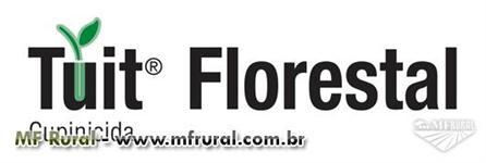 Tuit Florestal