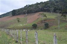 Fazenda Três Cachoeiras (Cantagalo - RJ) - 130 Alqueires