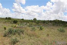 Fazenda de 1.133 ha em Itiquira MT