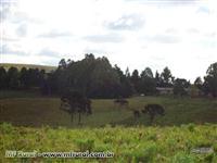 Fazenda próxima de Caxias do Sul -RS