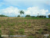 Terreno em Itaituba