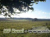 Fazenda na região de Marilia/SP em pasto e eucalipto rica em água
