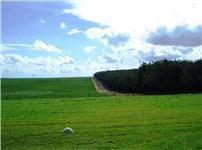 Vendo fazenda em Marilia/SP para pastagem ou plantio topografia otima