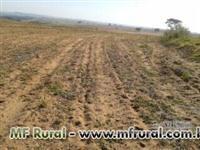 Vendo fazenda na região de Marilia/SP com otima topografia