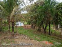Sitio na região de Vera Cruz/SP com pasto e agua