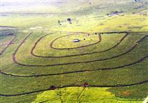 Vendo fazenda  na regiao de Presidente Venceslau