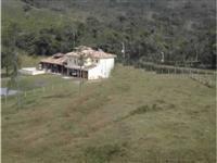 Vendo fazenda em Registro/SP com lavoura de pupunha e pastagem