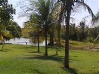 Vendo fazenda na região de Paranaíba/MS para pecuária ou plantio
