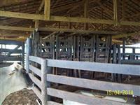 Vendo fazenda localizada no Sul do estado de Tocantins para pecuária com72.000ha