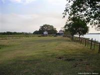 Vendo fazenda em Corumba/MS nas margens do Rio Paraguai em pecuaria