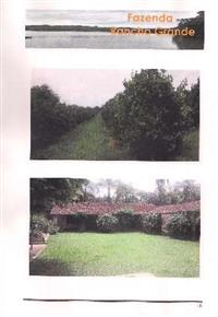 Fazenda na região de Espírito Sto do Pinhal/Mogi-Guaçu com café e laranja