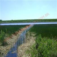 Vendo fazenda agropecuaria montada com 413 alqueires no município de Piracicab