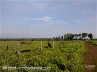 Fazenda com 822 hectares em VIla Rica/MT
