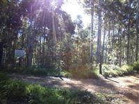 Sítio em Antônio Carlos-MG com 45 hectares