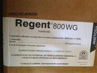 REGENTE 800 WG