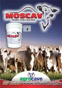 MOSCAV PREMIX