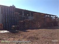 Pallets de madeira PBR semi novos