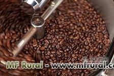 CAFÉ ARÁBICA TORRADO, CAFÉ ESPECIALMENTE PARA EXPRESSO - BLEND EXCLUSIVO