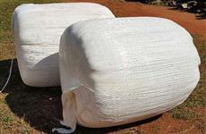 Pre secado de jiggs, excelente para equinos, ovinos e bovinos!