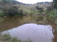 Sítio de 20 alqueires, com amplo lago, nascentes casas, CARVOARIA FORMADA
