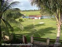 Fazenda 340 Ha Vigia - Pará