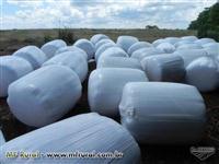 Pré-secado de capim JIGGS - ROLOS de 150 a 200kg,