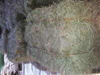 vende-se farelo de arroz , com otima qualidade e otimo para a alimentação de animais.