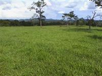 Fazenda 1418 ha Itapuranga - GO