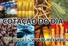Mercado interno e Exportação - Sugar IC45 - IC150 /Etanol /Grãos/Sunflowe Oil