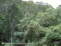 Terras para compensação ambiental
