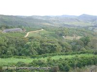 Fazenda de 30 ha em Claudio - MG, produtora de café, pecuária leiteira e granja