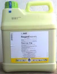 Regent 800
