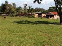 Fazenda em pasto a venda em Barretos/SP